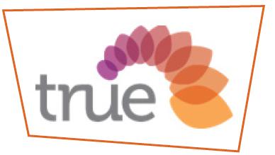 Logo shape - webpage.PNG